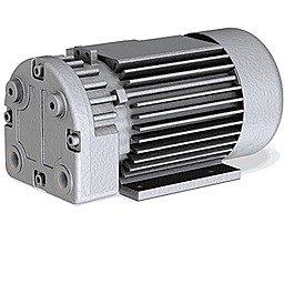 Безмасляный пластинчато-роторный вакуумный насос Busch Seco SV 1008 C_220
